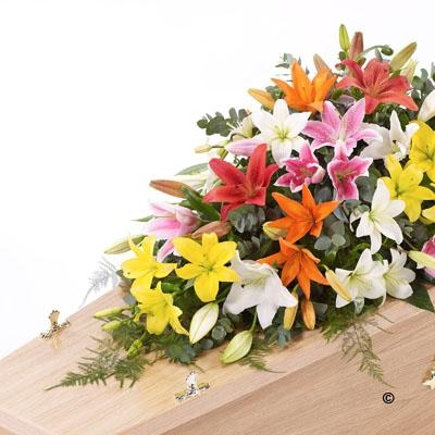 Lily Casket Spray   Mixed Colours *